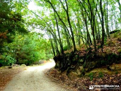 Reserva Natural del Valle de Iruelas;cultura viajes rutas y senderismo caminatas